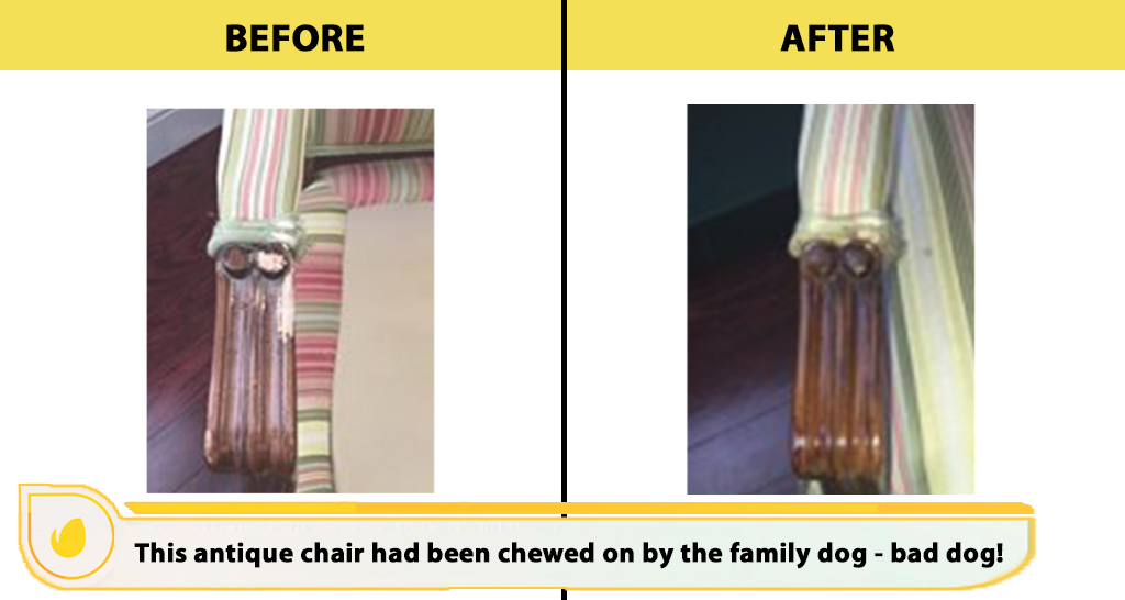dog bite chair